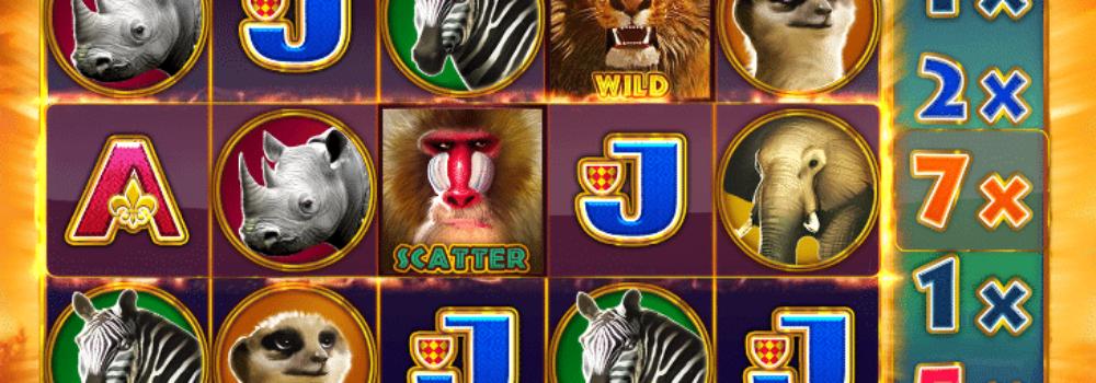 Hot Safari Spielautomat